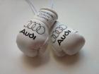 Cувенирные перчатки Audi на салонное зеркало